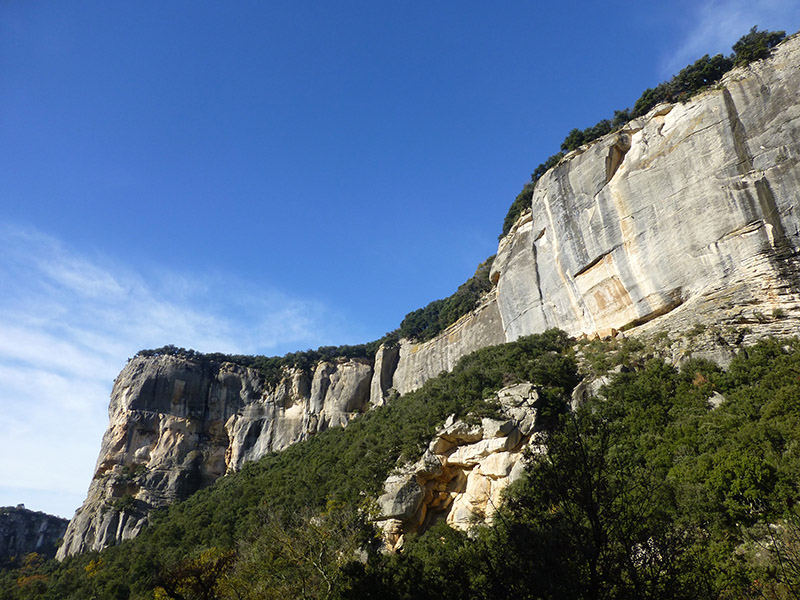 Climbing Cliff - Buoux (Luberon)