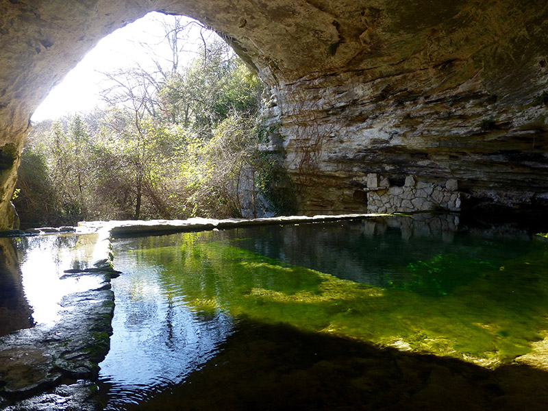 Immersion Nature en Provence